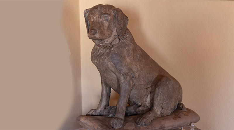 Il cane Tago, Bologna @torridibologna